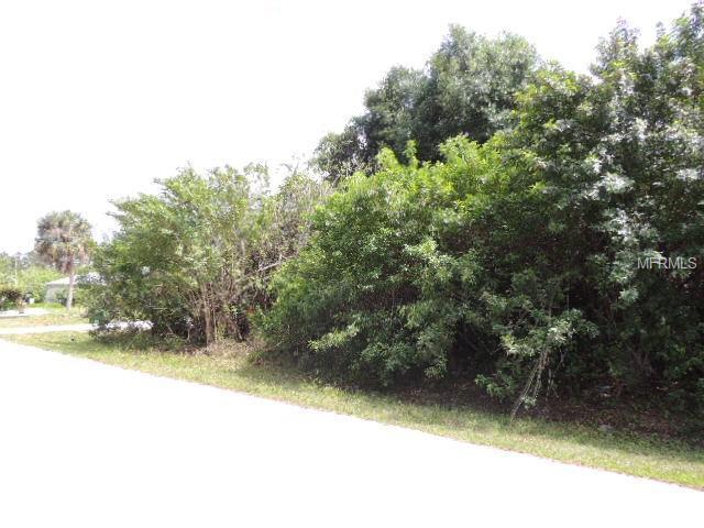 23255 Mcquade Avenue, Port Charlotte, FL 33980 (MLS #C7414529) :: Delgado Home Team at Keller Williams