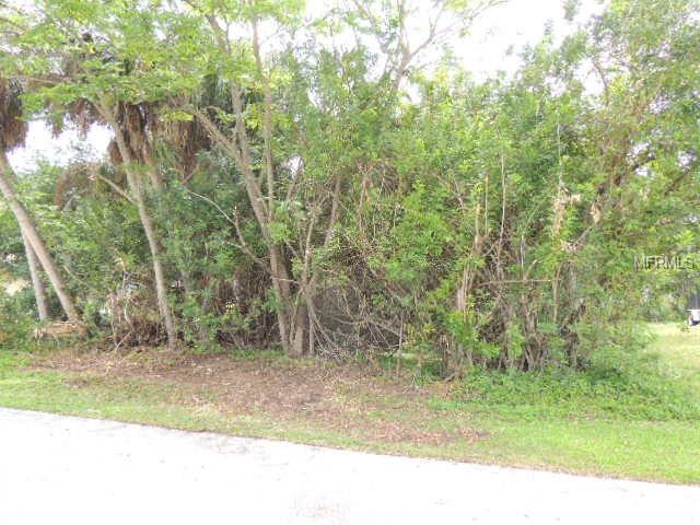 1469 Proper Street, Port Charlotte, FL 33952 (MLS #C7414530) :: The Duncan Duo Team