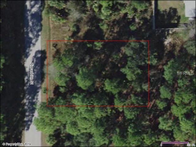 Pincushion Street, North Port, FL 34286 (MLS #C7415898) :: Premium Properties Real Estate Services