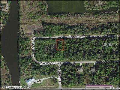 14329 Cando Avenue, Port Charlotte, FL 33981 (MLS #C7416012) :: RE/MAX Realtec Group