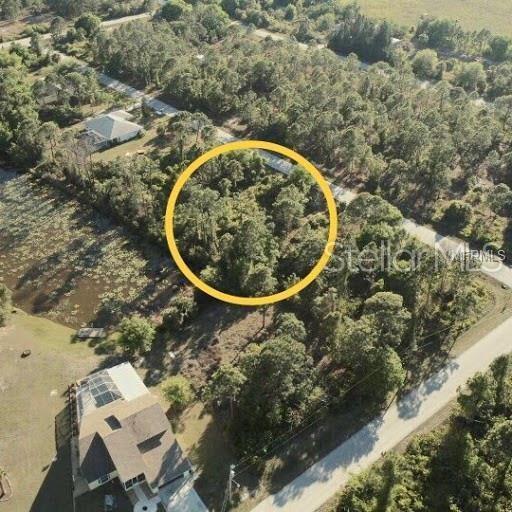 Address Not Published, Punta Gorda, FL 33955 (MLS #C7416631) :: Dalton Wade Real Estate Group