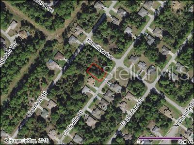 Circleville Street, North Port, FL 34286 (MLS #C7416909) :: White Sands Realty Group