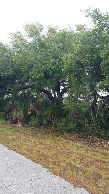 Shaffer Avenue, North Port, FL 34291 (MLS #C7416945) :: The Edge Group at Keller Williams