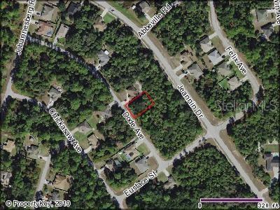 Dode Avenue, North Port, FL 34288 (MLS #C7417663) :: The Edge Group at Keller Williams