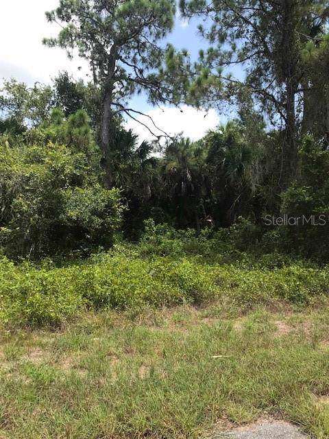 Lot 7 Hamburg Drive, North Port, FL 34288 (MLS #C7417871) :: GO Realty
