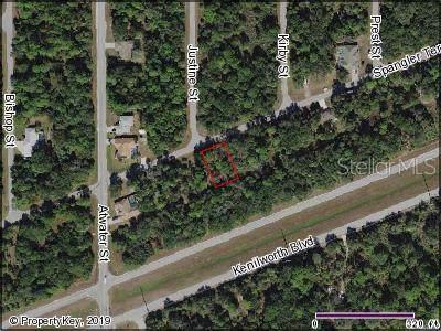 20367 Spangler Terrace, Port Charlotte, FL 33954 (MLS #C7418937) :: Team 54
