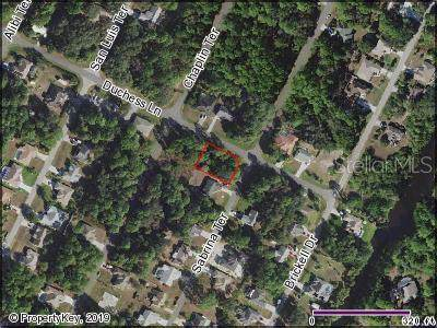 Sabrina Terrace / Duchess Lane, North Port, FL 34286 (MLS #C7418962) :: The Duncan Duo Team