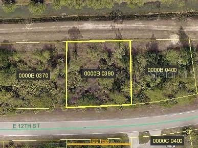 2021 E 12TH Street, Lehigh Acres, FL 33972 (MLS #C7419192) :: Dalton Wade Real Estate Group