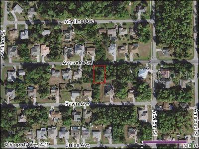 23243 Avacado Avenue, Port Charlotte, FL 33980 (MLS #C7419241) :: Zarghami Group