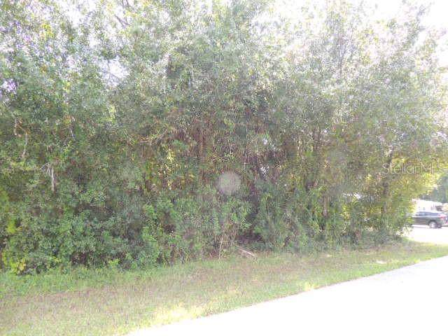 5430 Riley Lane, Port Charlotte, FL 33981 (MLS #C7419763) :: White Sands Realty Group