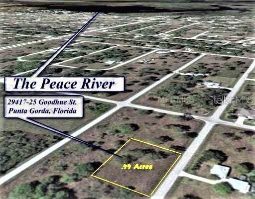 29417 Goodhue Street, Punta Gorda, FL 33982 (MLS #C7419988) :: Cartwright Realty