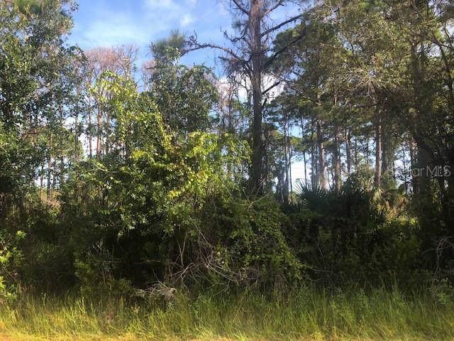 14278 Riseley Avenue, Port Charlotte, FL 33953 (MLS #C7420173) :: Griffin Group