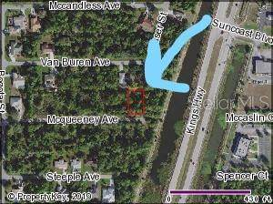 23446 Mcqueeney Avenue, Port Charlotte, FL 33980 (MLS #C7420347) :: 54 Realty
