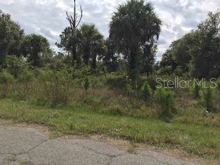 Joewood Circle, North Port, FL 34288 (MLS #C7421956) :: GO Realty