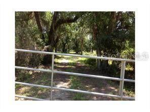 Pine Level Road, Ona, FL 33865 (MLS #C7421960) :: Lockhart & Walseth Team, Realtors