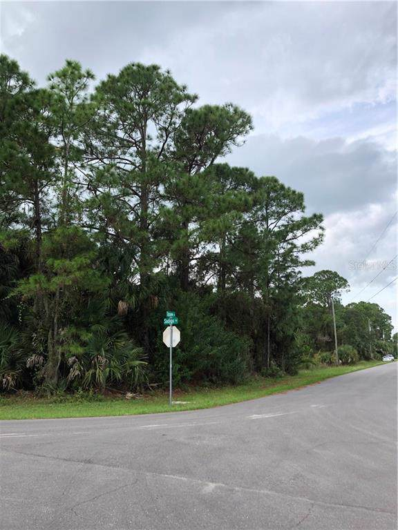 Squaw Lane, North Port, FL 34286 (MLS #C7422115) :: Medway Realty