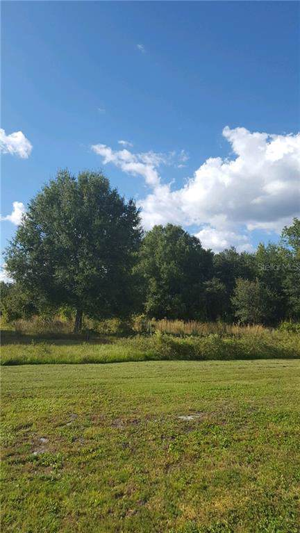 7114 SW Ogden Acres Road, Arcadia, FL 34269 (MLS #C7422323) :: Team Bohannon Keller Williams, Tampa Properties