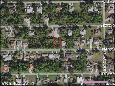 23208 Nancy Avenue, Port Charlotte, FL 33952 (MLS #C7422421) :: The Robertson Real Estate Group