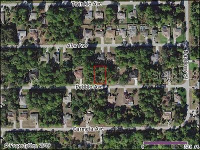 Pebble Avenue, North Port, FL 34286 (MLS #C7422607) :: 54 Realty