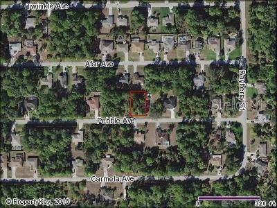 Pebble Avenue, North Port, FL 34286 (MLS #C7422613) :: 54 Realty