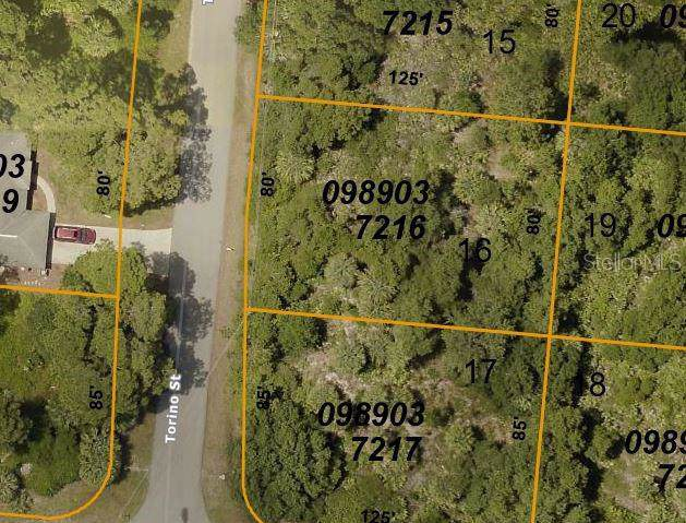 LOT 16 Torino Street, North Port, FL 34287 (MLS #C7423341) :: The Duncan Duo Team