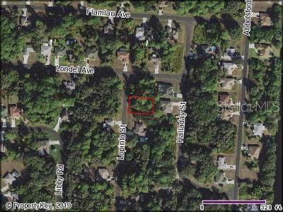 Lopinto Street, North Port, FL 34287 (MLS #C7423504) :: The Duncan Duo Team