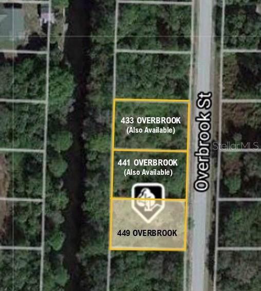 449 Overbrook Street, Port Charlotte, FL 33954 (MLS #C7423927) :: Griffin Group