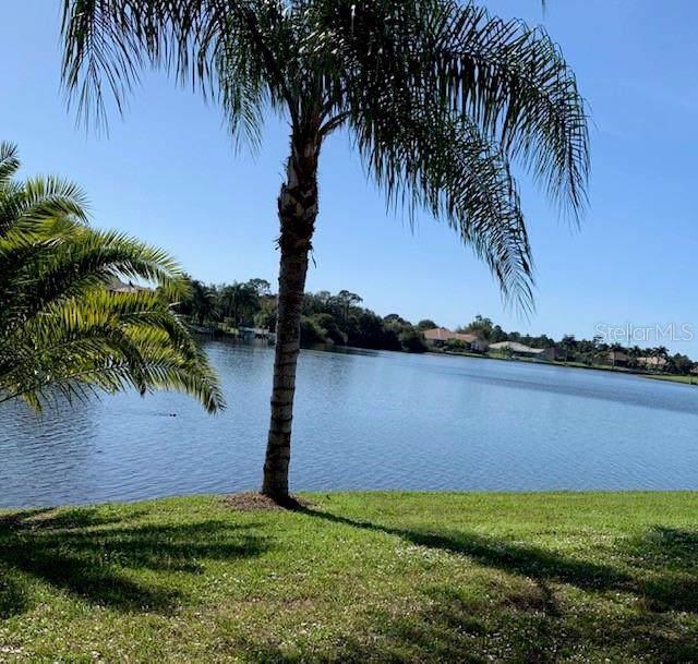 11639 SW Dallas Drive S, Lake Suzy, FL 34269 (MLS #C7424410) :: Team Bohannon Keller Williams, Tampa Properties