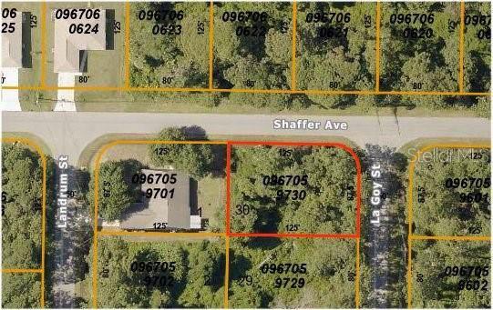 La Goy Street, North Port, FL 34291 (MLS #C7424453) :: Cartwright Realty