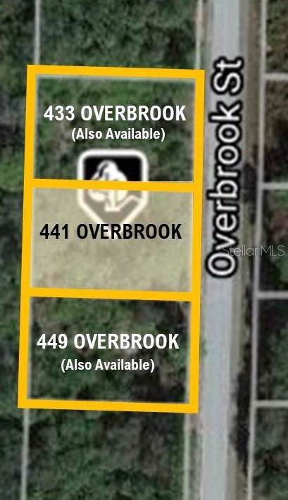 441 Overbrook Street, Port Charlotte, FL 33954 (MLS #C7424518) :: Zarghami Group