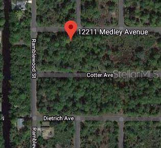 12211 Medley Avenue, Port Charlotte, FL 33953 (MLS #C7424620) :: GO Realty