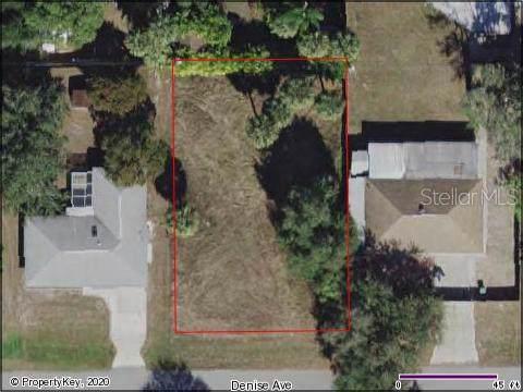 21080 Denise Avenue, Port Charlotte, FL 33952 (MLS #C7424678) :: Cartwright Realty
