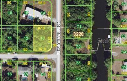 21532 Winlock Avenue, Port Charlotte, FL 33952 (MLS #C7424957) :: Rabell Realty Group