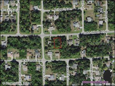 18289 Lake Worth Boulevard, Port Charlotte, FL 33948 (MLS #C7426082) :: Baird Realty Group