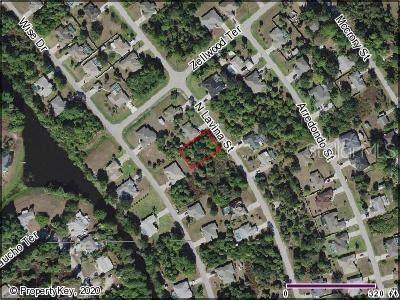 Lavina Street, North Port, FL 34286 (MLS #C7426085) :: Lovitch Group, LLC