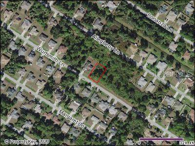 Wurtsmith Lane, North Port, FL 34286 (MLS #C7426139) :: Baird Realty Group