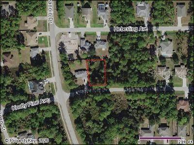 Knotty Pine Avenue, North Port, FL 34288 (MLS #C7426293) :: Lovitch Group, LLC