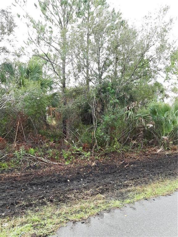 13139 Doubleday Avenue, Port Charlotte, FL 33953 (MLS #C7426315) :: Homepride Realty Services