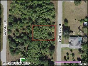 199 Salisbury St, Port Charlotte, FL 33954 (MLS #C7426323) :: Pristine Properties