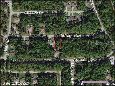 Nobregas Avenue, North Port, FL 34288 (MLS #C7427581) :: Medway Realty