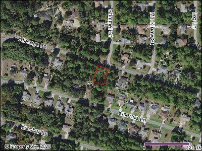 Albenga Lane, North Port, FL 34286 (MLS #C7428018) :: Cartwright Realty