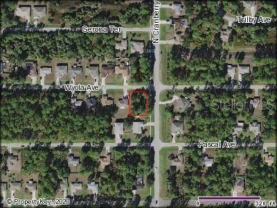 Wyola Avenue, North Port, FL 34286 (MLS #C7428612) :: Team Bohannon Keller Williams, Tampa Properties