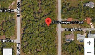 3055 Sargeant Street, Port Charlotte, FL 33948 (MLS #C7428798) :: Cartwright Realty