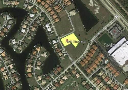 3648 Tripoli Boulevard, Punta Gorda, FL 33950 (MLS #C7429192) :: Griffin Group