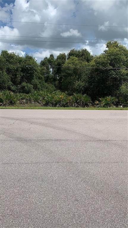 29214 Peace River Shores Boulevard, Punta Gorda, FL 33982 (MLS #C7429541) :: Team Buky