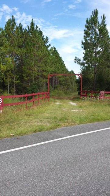 Unassigned Location Re, Perry, FL 32347 (MLS #C7429589) :: Zarghami Group