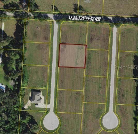 1614 SE Honeybell Lane, Arcadia, FL 34266 (MLS #C7430281) :: Premier Home Experts