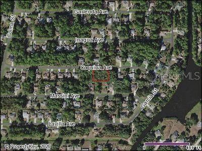 Coquina Avenue, North Port, FL 34286 (MLS #C7432242) :: Team Buky