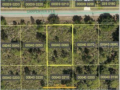 830 Carpenter Street E, Lehigh Acres, FL 33974 (MLS #C7432420) :: Rabell Realty Group