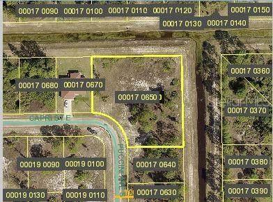 747 Puccini Avenue S, Lehigh Acres, FL 33974 (MLS #C7432449) :: Team Borham at Keller Williams Realty